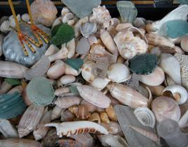lake michigan beach glass, sea glass, frosted glass, beaches